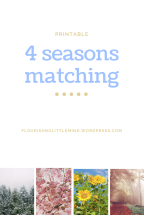 4 seasons matching